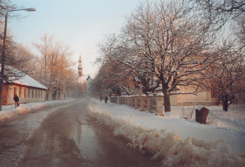 sokolova-06